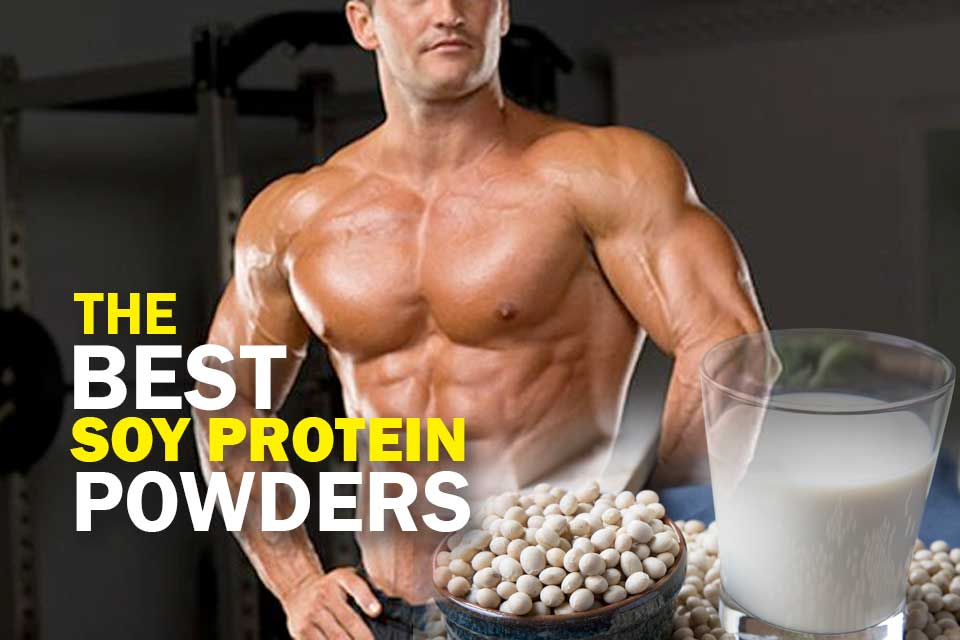 Best Soy Protein Powders Cover Image