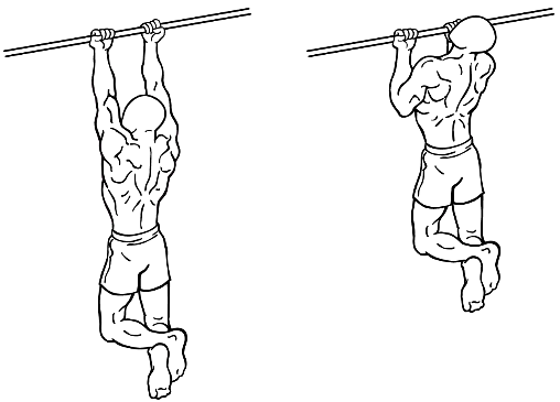 Grip chin up workout scheme