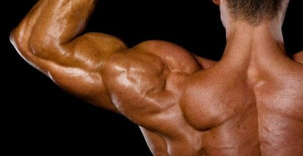 How to Get Wider Shoulders: The Best Workout Exercises for HUGE Deltoids