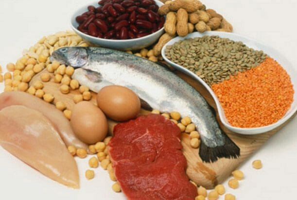 An assortment of proteins.