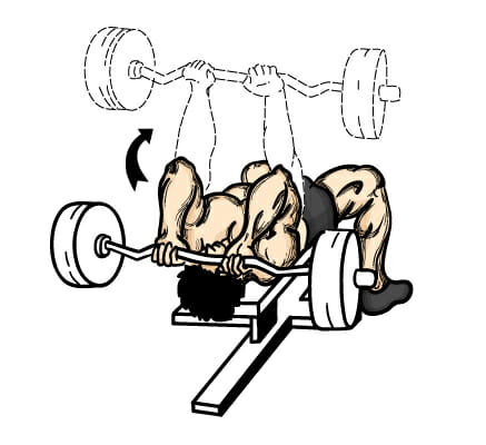 Scheme of a man doing barbell skull crushers