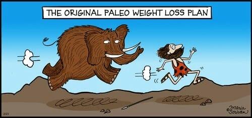 Paleo weight loss plan comic