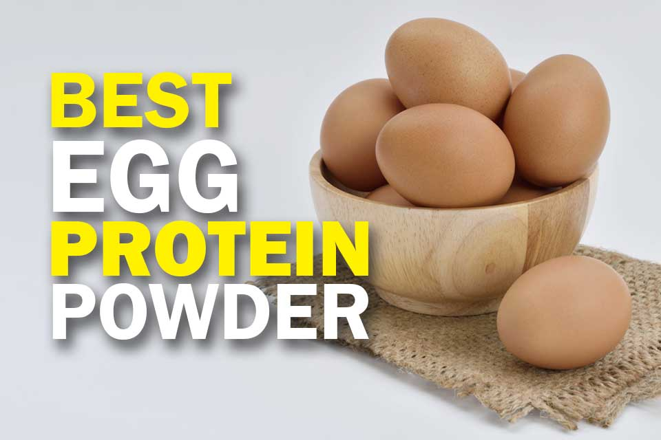 6 Best Egg Protein Powders for a Better You (2019 Review)