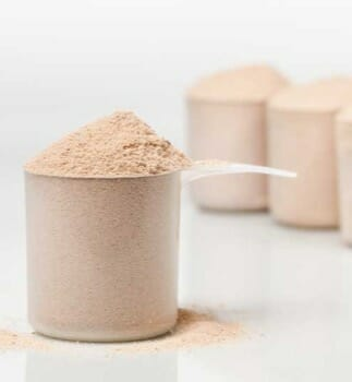 scoop of casein protein powders