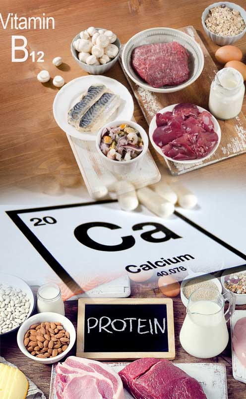 Vitamin B12, Calcium & Protein