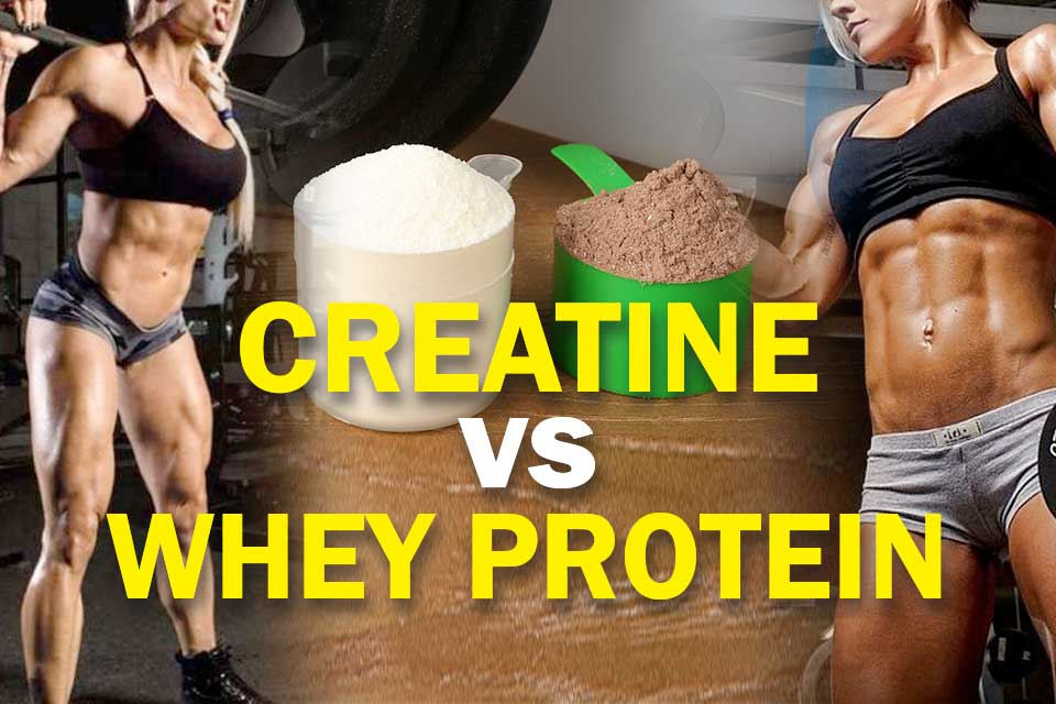 Creatine vs Whey Cover Image