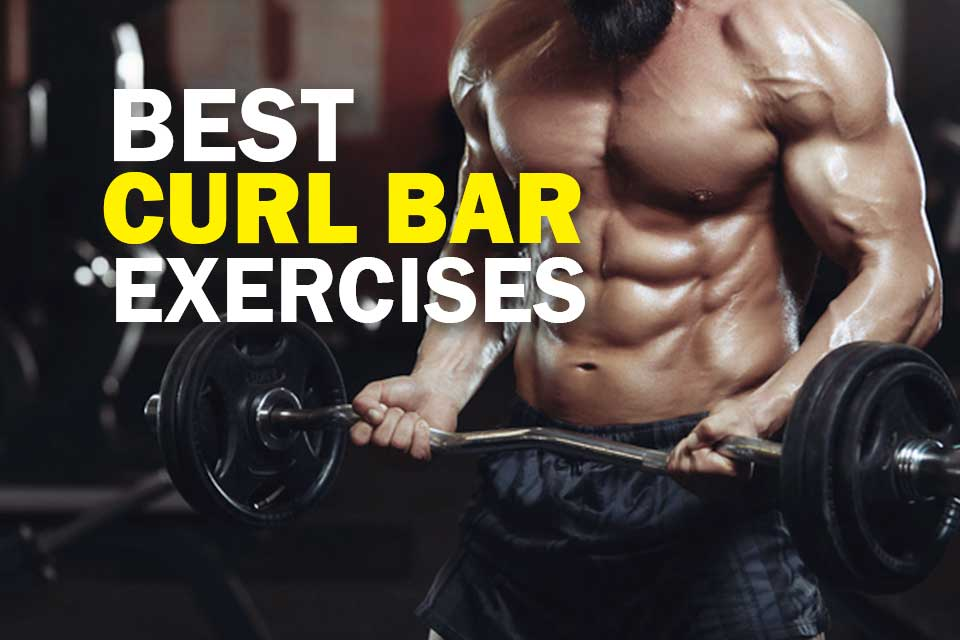 Best Curl Bar Exercises Cover Image