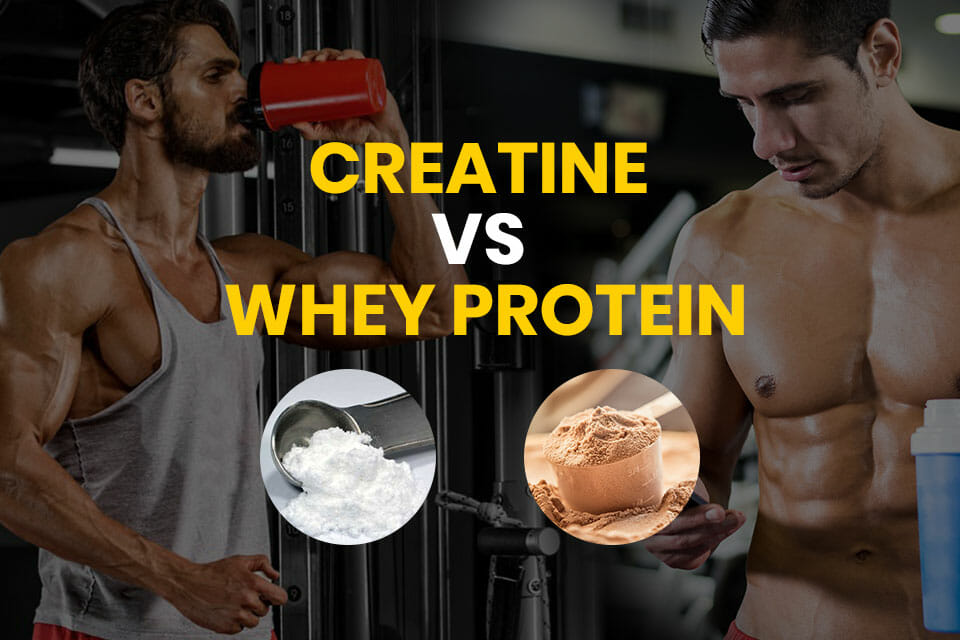 Creatine Vs Protein Featured Image