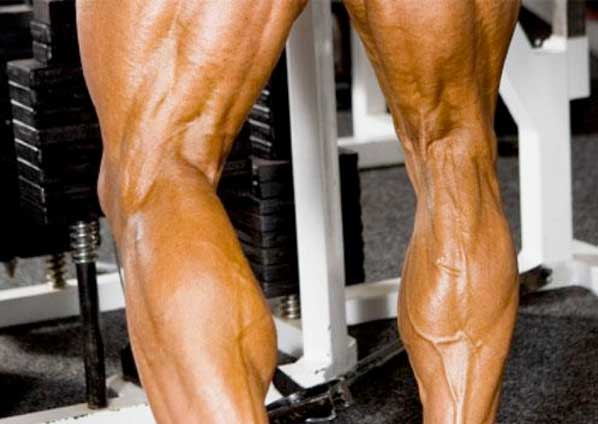 body builder calves