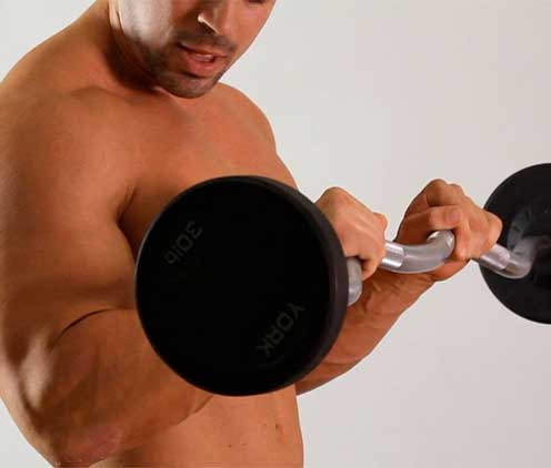 Reverse Barbell Curl