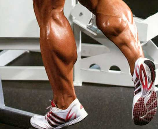 Hold and Squeeze calves workout