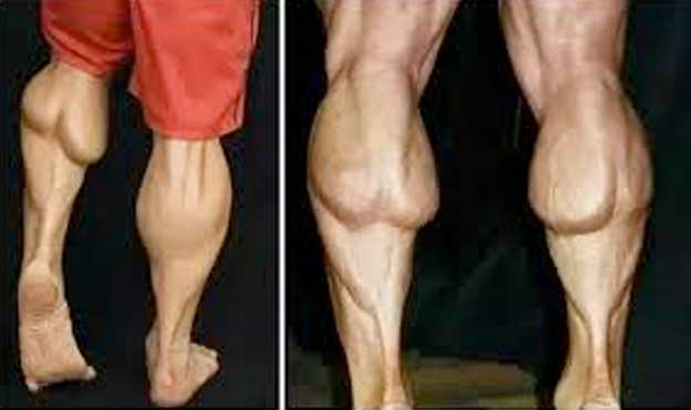 body builders calves