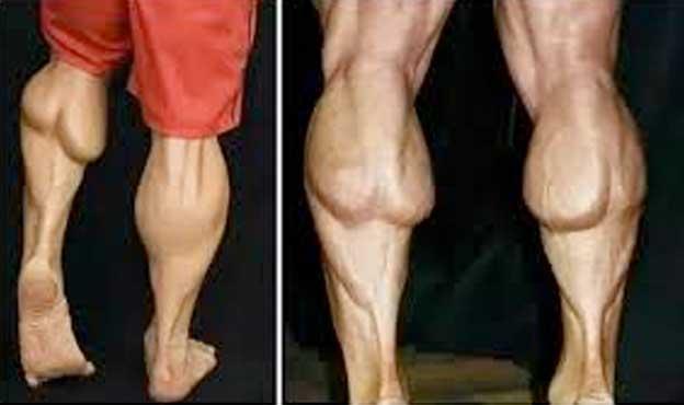 body builders calves