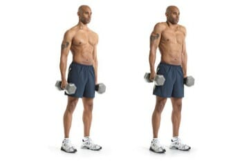 Barbell And Dumbbell Shrugs - Upper Body Exercise for Broad Shoulders and Wider Shoulders