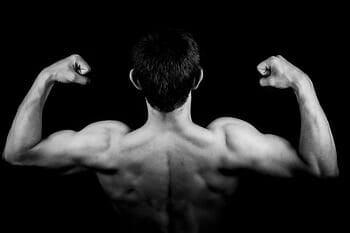 back-triceps - upper body strength training