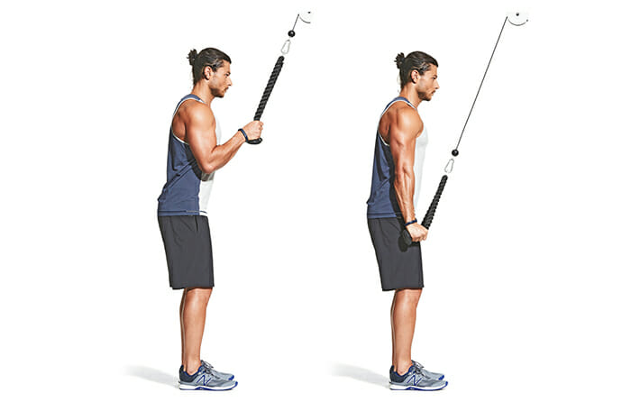Rope Triceps Press Down