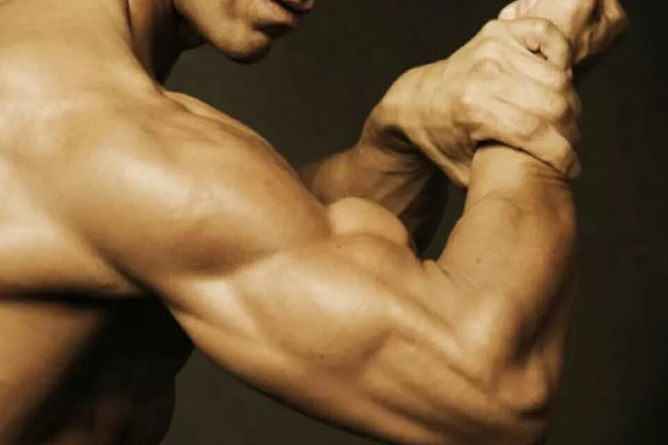 training biceps and triceps