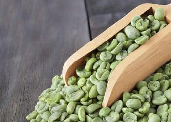 green coffee bean with chlorogenic acid