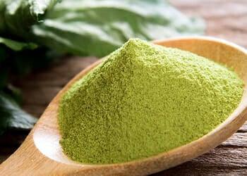 green tea extract2