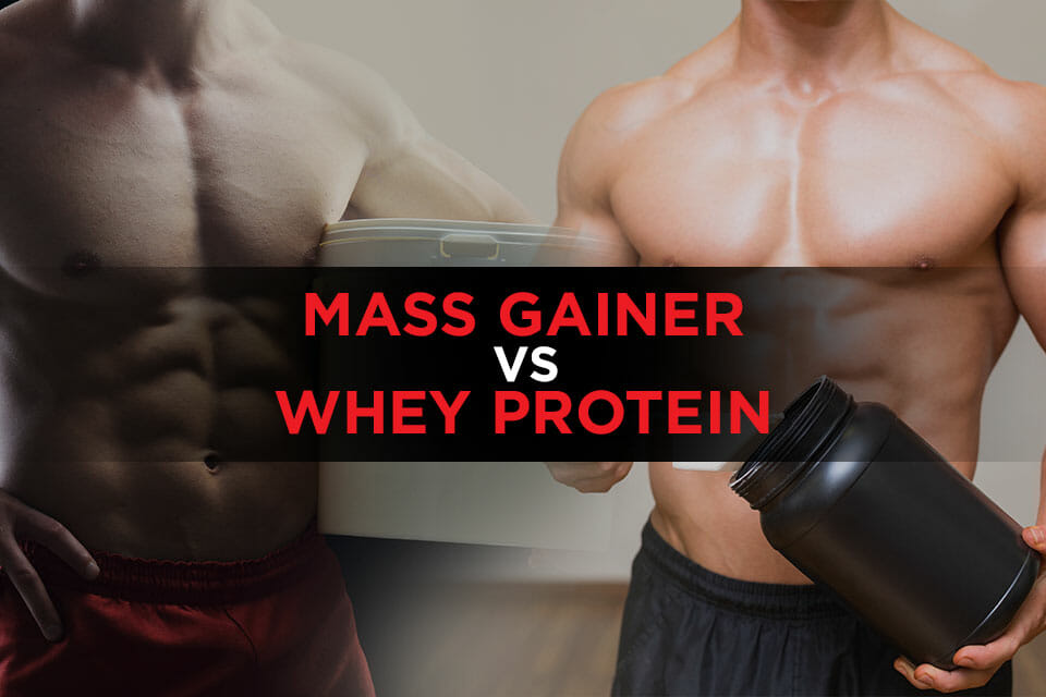 Mass Gainer VS Whey Protein Featured Image