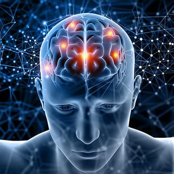 image of brain activity