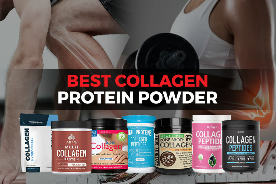 Best collagen protein powder featured