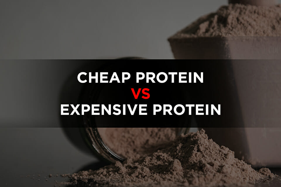 Cheap Protein Vs Expensive Protein Featured Image