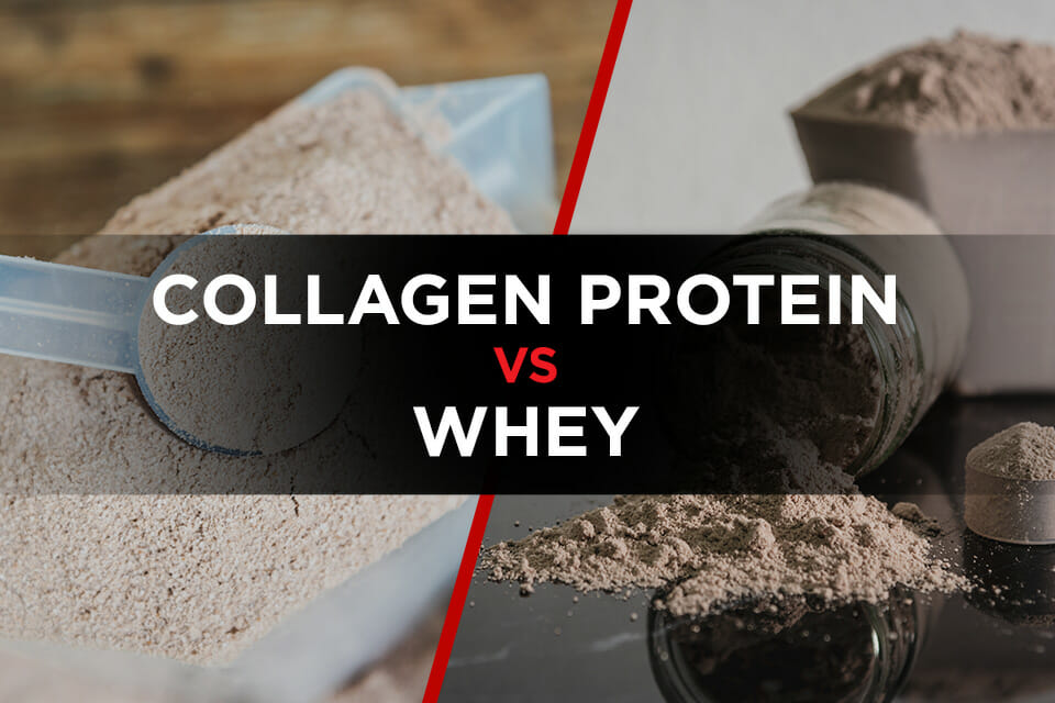 Collagen protein vs whey featured image