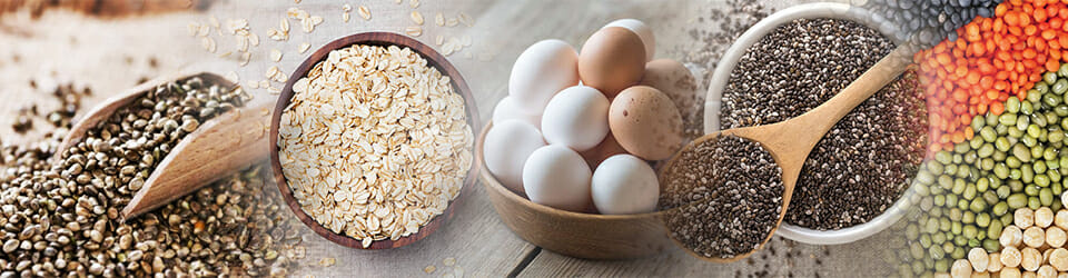 Protein substitutes Banner