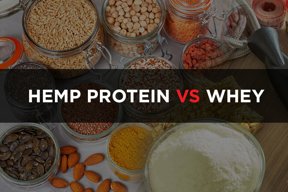 Hemp Protein Vs Whey Featured image