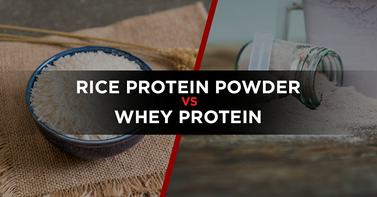 Rice protein powder vs whey protein featured image