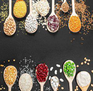 various sources of protein powder