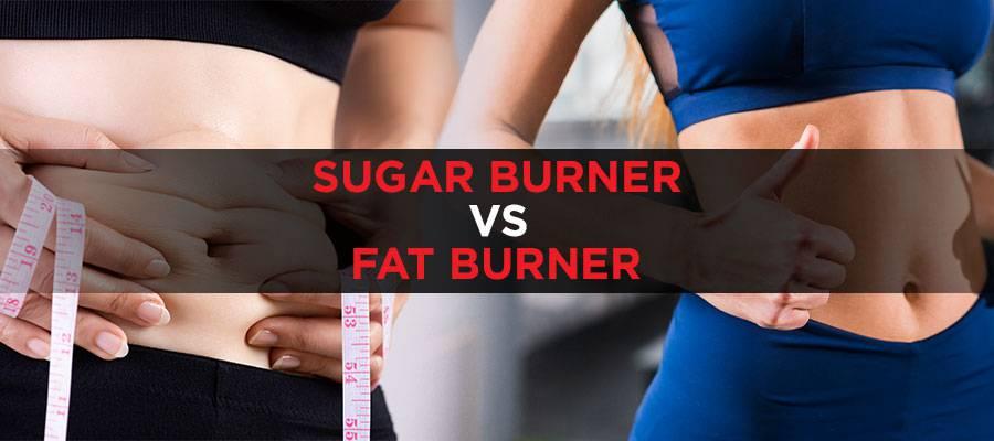 Sugar Burner vs Fat Burner Featured Image