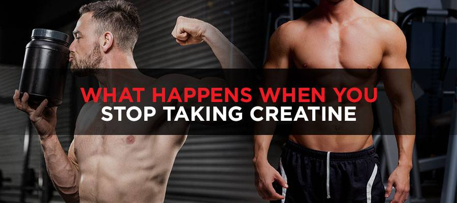 what happens when you stop taking creatine featued image