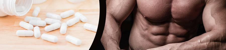 multivitamin for bodybuilding banner