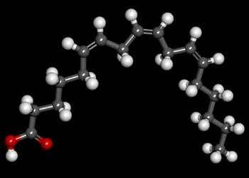 Gamma Linolenic Acid