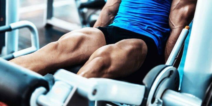 Best Leg Extension Machine