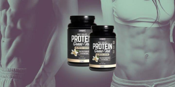whey protein banner