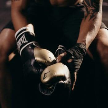 boxer gloves