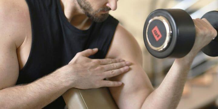 Brachialis Exercise for You