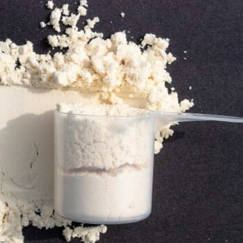 protein powder in a scoop