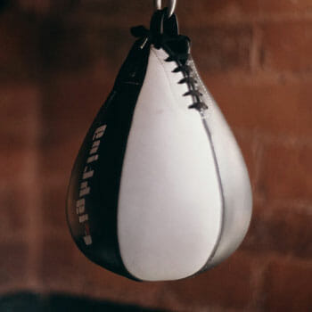 hanging speed bags