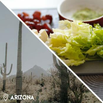 desert cactus, and kale