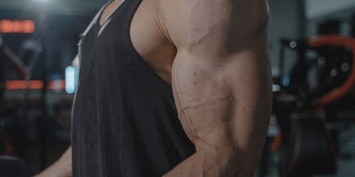 guide to long head bicep workout