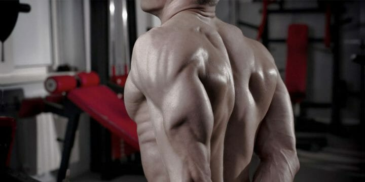 guide to long head tricep workout