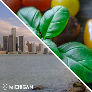 michigan city view, and tomatoes