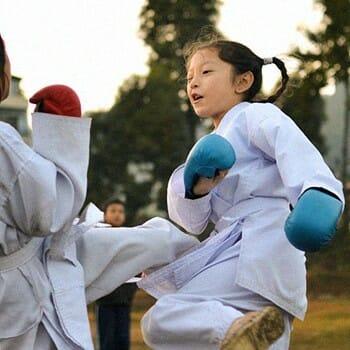 Schools for mixed martial arts