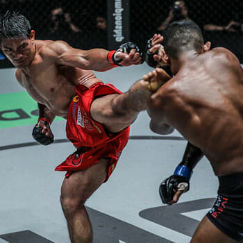 man conducting a spinning kick on another man