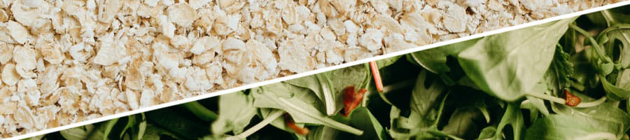 close up shot of oatmeal grains and green leaves