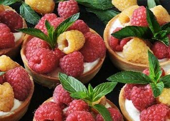 A serving of Greek yogurt fruit tarts